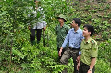 Đại hội Công đoàn Tổng công ty Lâm nghiệp Việt Nam lần thứ 7
