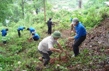 Đại hội Công đoàn Tổng công ty Lâm nghiệp Việt Nam lần thứ 10